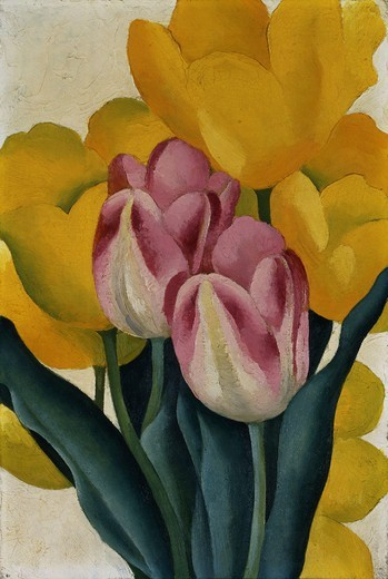 Stock Photo: 866-12754 Tulips Pink and Yellow. Georgia O'Keefe (1887-1986). Oil on board. 24.8 x 16.8 cm
