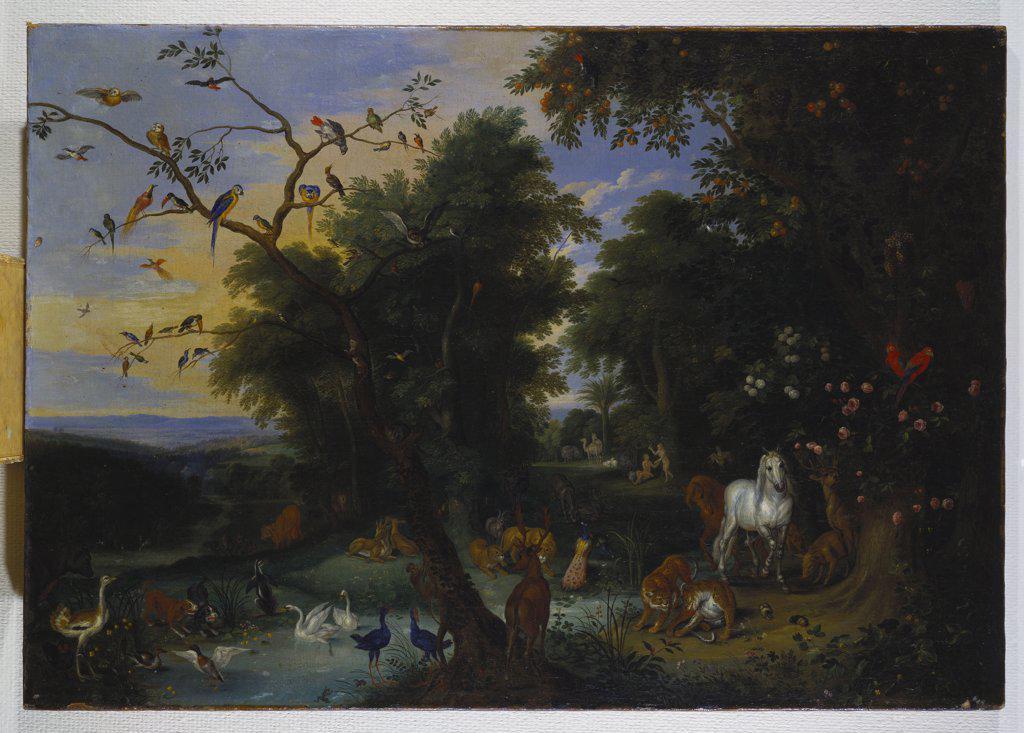 Garden of Eden. Jan van Kessel I (1626-1679). Oil on canvas, 64.8 x 92.7cm. : Stock Photo