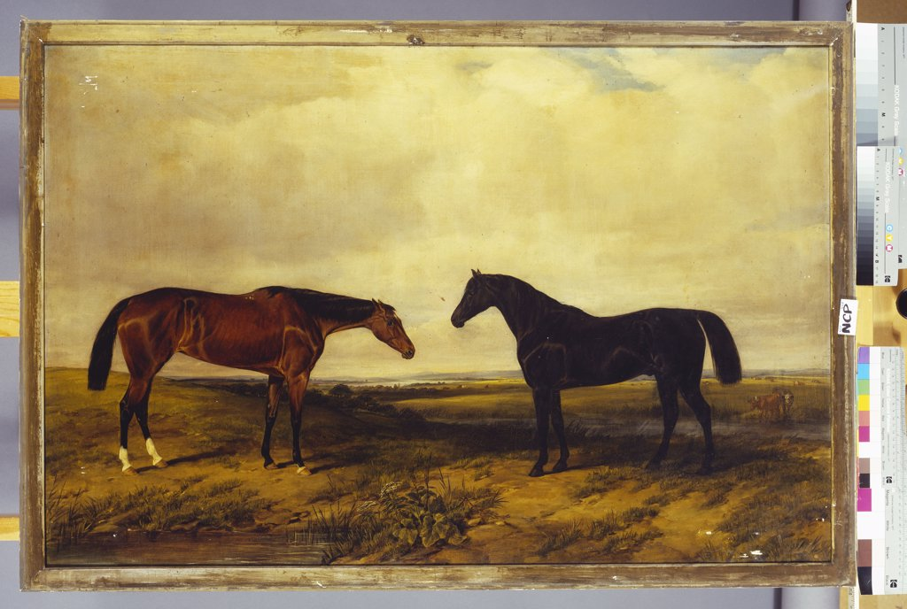 Stock Photo: 866-8255 The Earl of Granards's Bright Bay Filly and Dark Bay Stallion Standing in an Extensive Landscape. William Luker (1828-1905). Dated 1855, oil on canvas, 76.2 x 114.3cm.