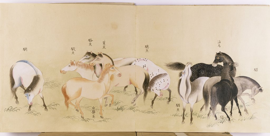 A Japanese Concertina Album in the Chinese Style  depicting a Multitude of Horses. Ink and colour on paper, 31 x 67.2cm. Early 19th century. : Stock Photo