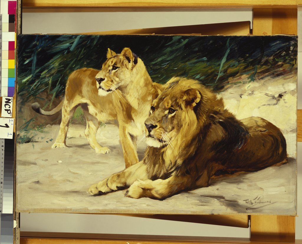 Stock Photo: 866-8382 Lion and Lioness; Lowenparr. Wilhelm Kuhnert (1865-1926). Oil on canvas, 44.4 x 69.8cm.