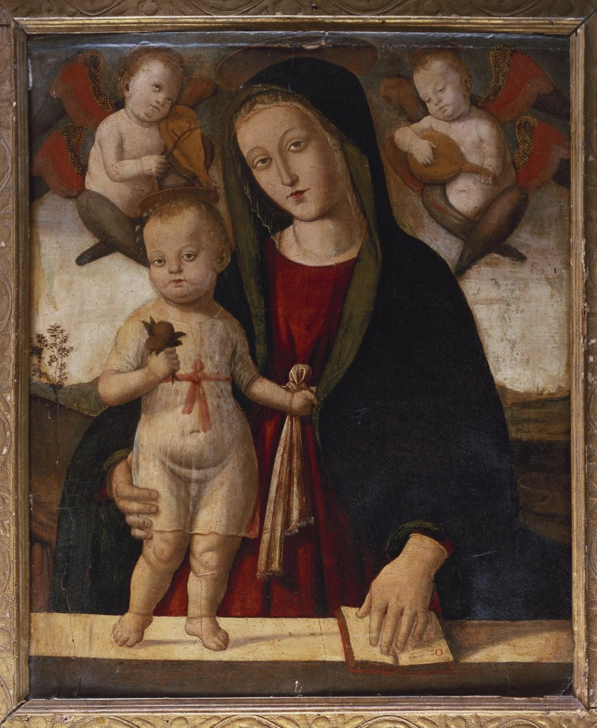 Stock Photo: 866-8554 The Madonna and Child. Bernardino Fungai (c.1460-1516). Oil on panel, 82.2 x 67.3cm.