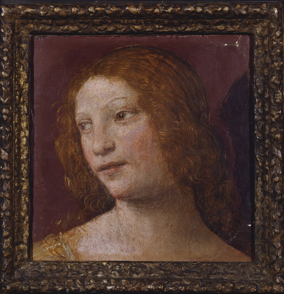 The Head of an Angel - a Fragment. Luini Bernardino (c.1480-1532). Fresco laid down on panel, 29.2 x 28.6cm. : Stock Photo