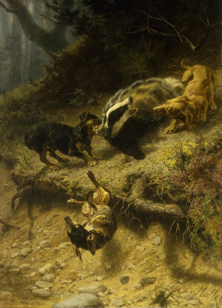 Stock Photo: 866-9273 Dachshunds on a Badger. Guido von Maffei (b.1838). Oil on canvas. Signed and dated 1882. 166.4 x 121.8cm