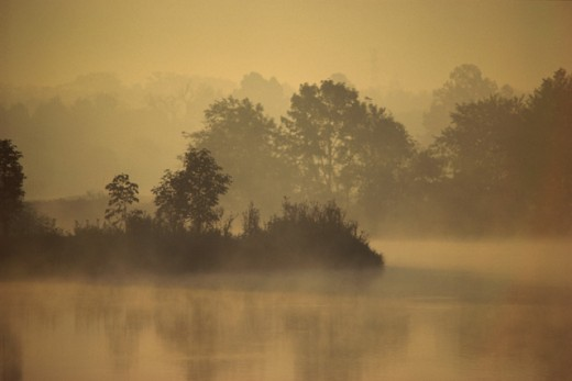 Stock Photo: 867R-1320 Fog over a lake