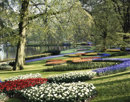 Keukenhof Gardens Lisse Netherlands : Stock Photo