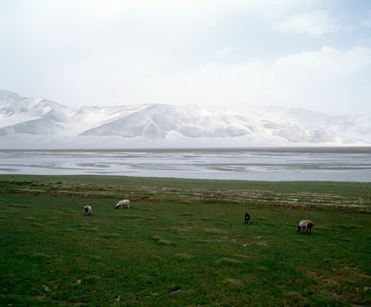 Stock Photo: 869-711 Mount Bolunkol