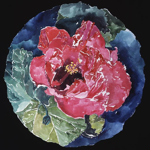 Stock Photo: 875-3029 Hibiscus Tondo 1994 John Bunker (20th C. American) Watercolor