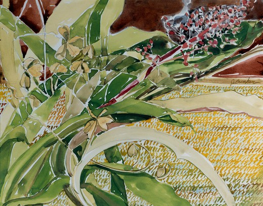 Stock Photo: 875-3043 Bromeliad by John Bunker, watercolor, 1994