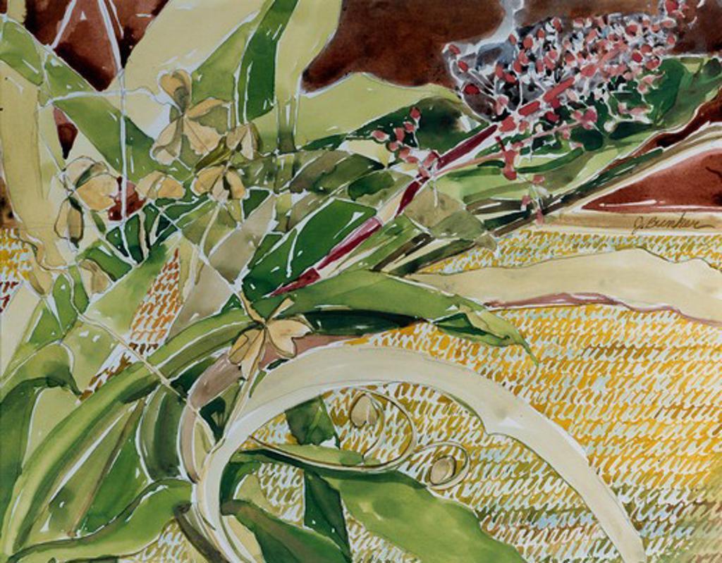 Bromeliad by John Bunker, watercolor, 1994 : Stock Photo