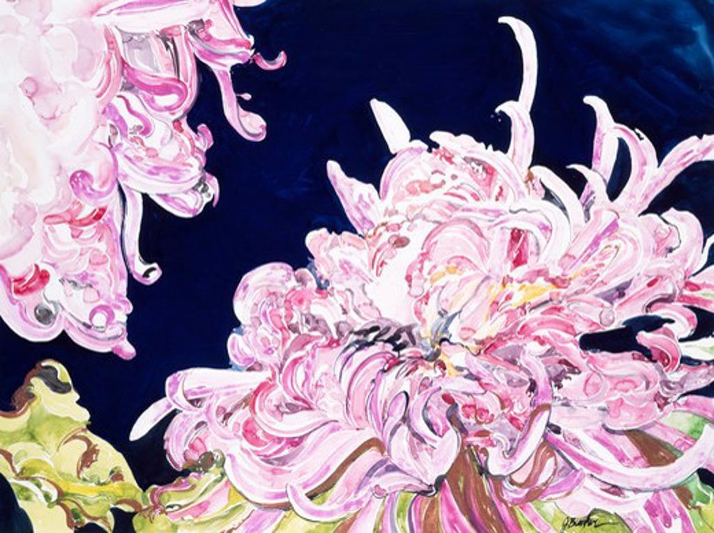 Chrysanthemums 1991 John Bunker (20th C. American) Watercolor : Stock Photo