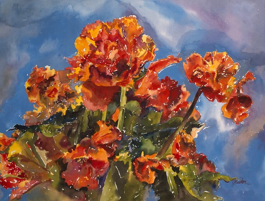 Stock Photo: 875-3348 Brilliant Begonia & Blue by John Bunker, watercolor, 1998