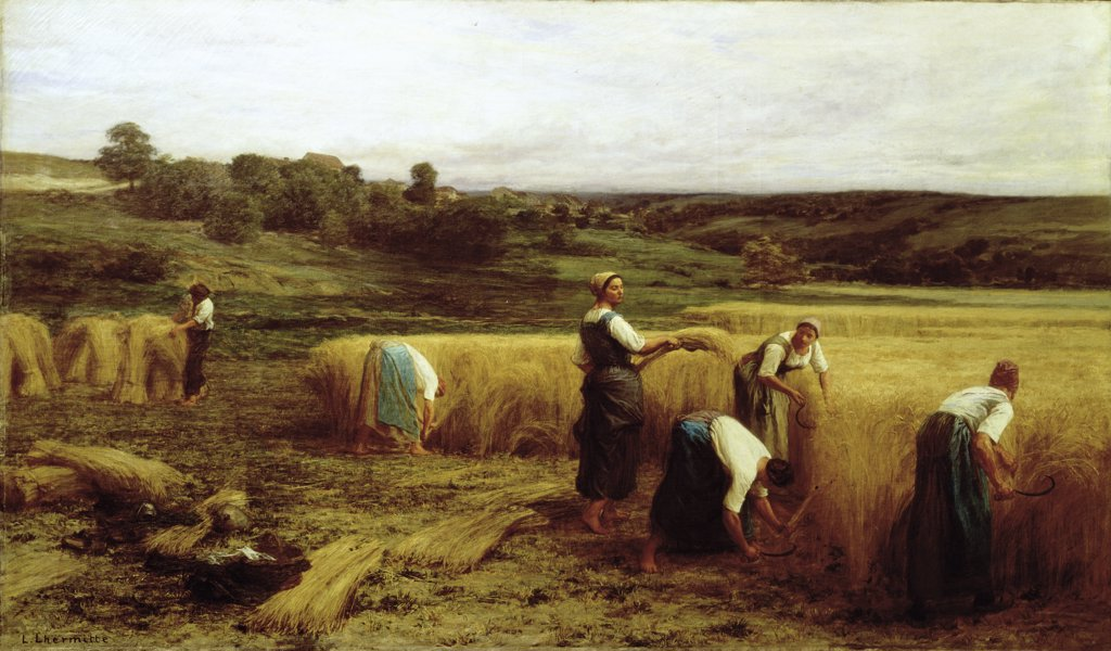 Stock Photo: 900-122054 Harvest Time