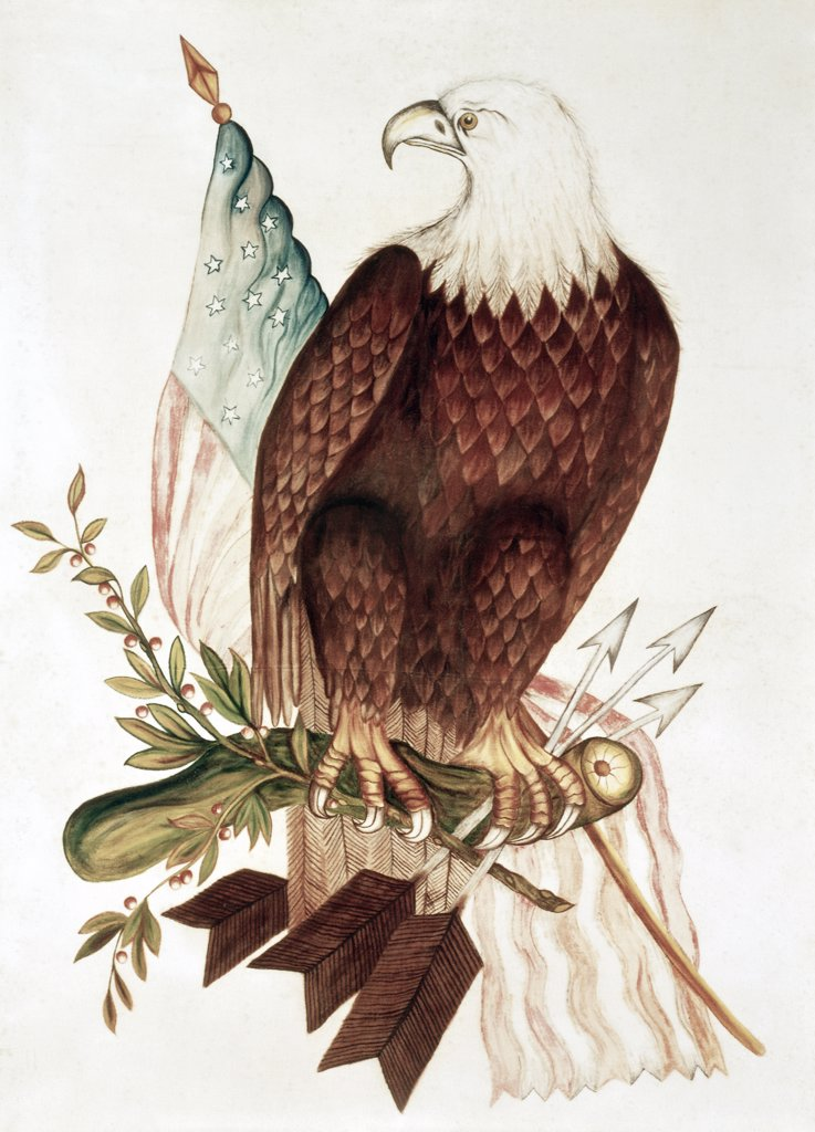 Stock Photo: 900-124782 Bald Eagle With American Flag