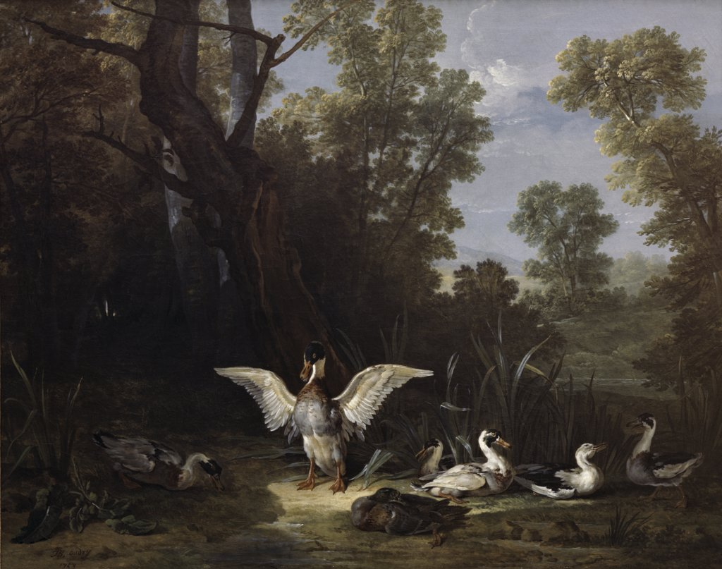 Stock Photo: 900-3252 Ducks Jean-Baptiste Oudry (1686-1755 French)