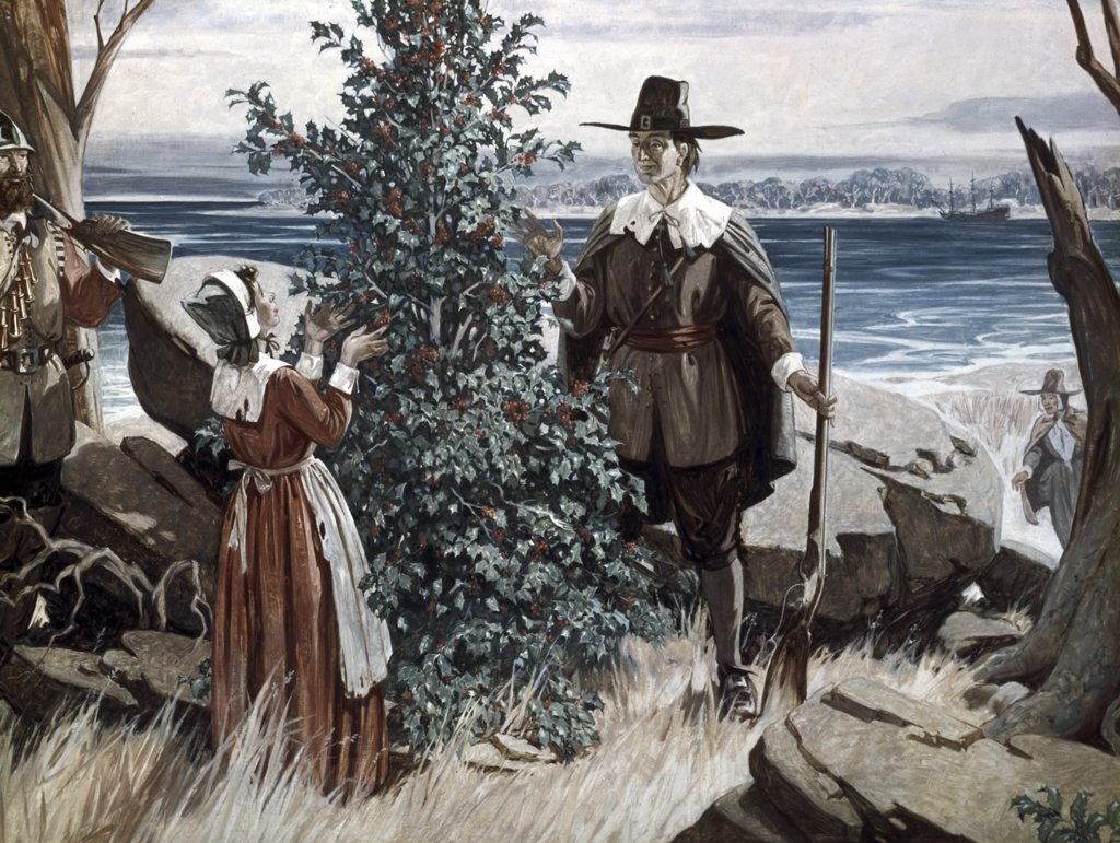 Stock Photo: 900-6047 Pilgrims Find Reminder of Homeland In Holly Tree, Forrest C. Crooks