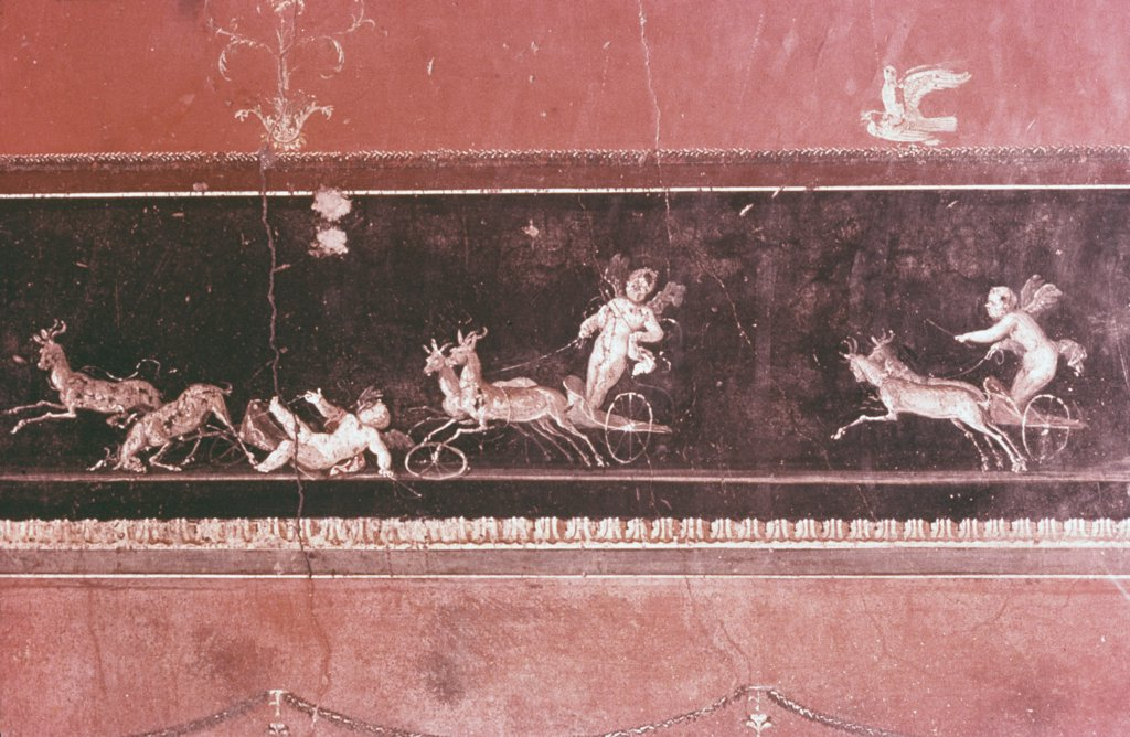 Stock Photo: 900-927 Hunting Amorini