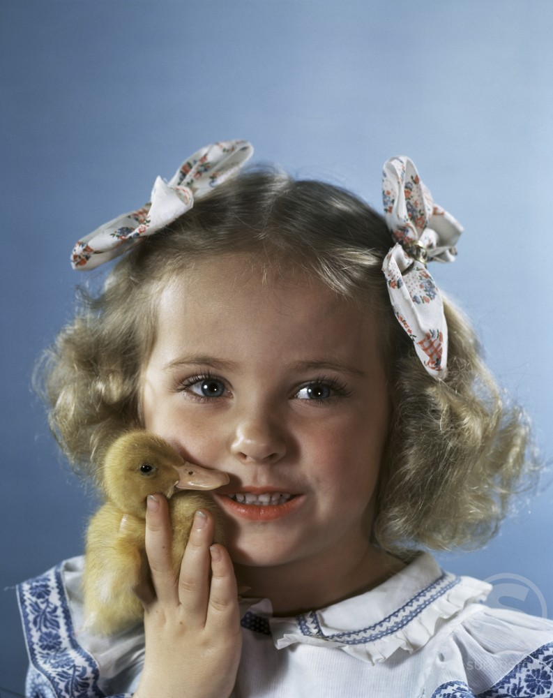 Stock Photo: 966-1655 Close-up of a girl holding a duckling and looking afraid