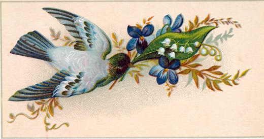 Bird with Flowers, Nostalgia Cards : Stock Photo