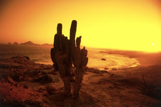 Stock Photo: 99-985 Cabo San Lucas
