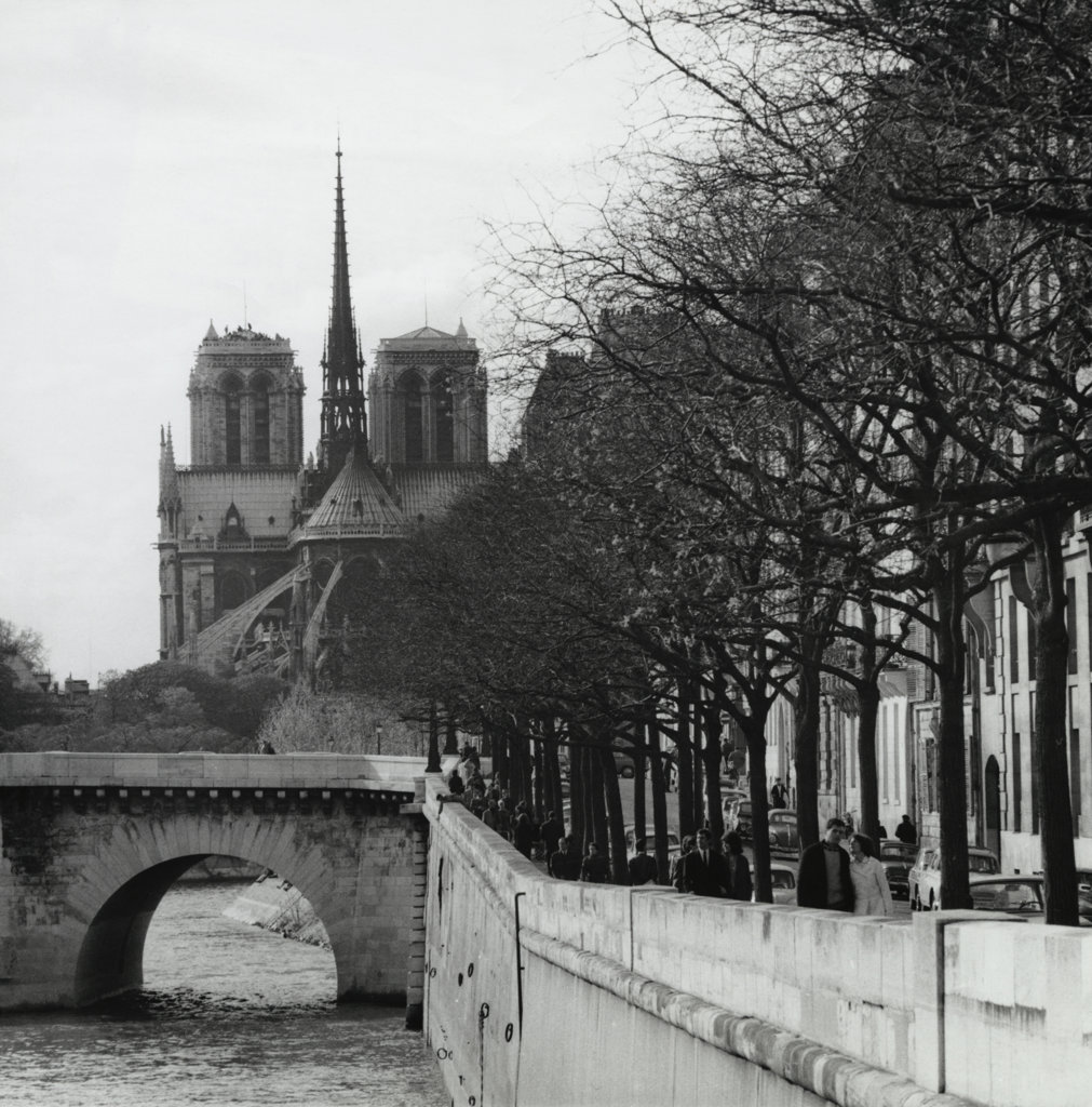 Stock Photo: 990-2183 Cathedral near a river, Notre Dame, Paris, France