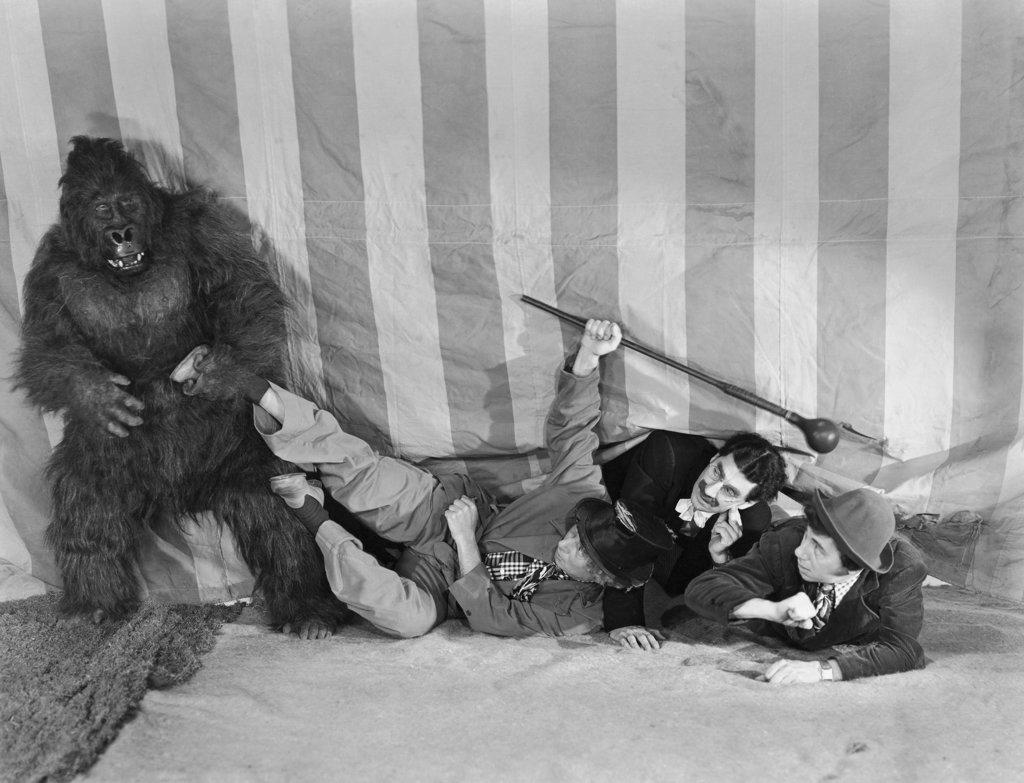 Stock Photo: 990-859 Marx Brothers