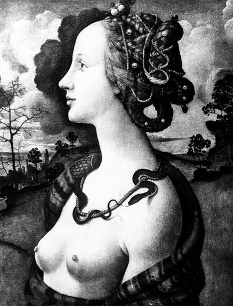 Portrait of Simonetta Vespucci by Piero di Cosimo, oil on panel, circa 1480, 1462 ? 1521, France, Chantilly, Musee Conde : Stock Photo
