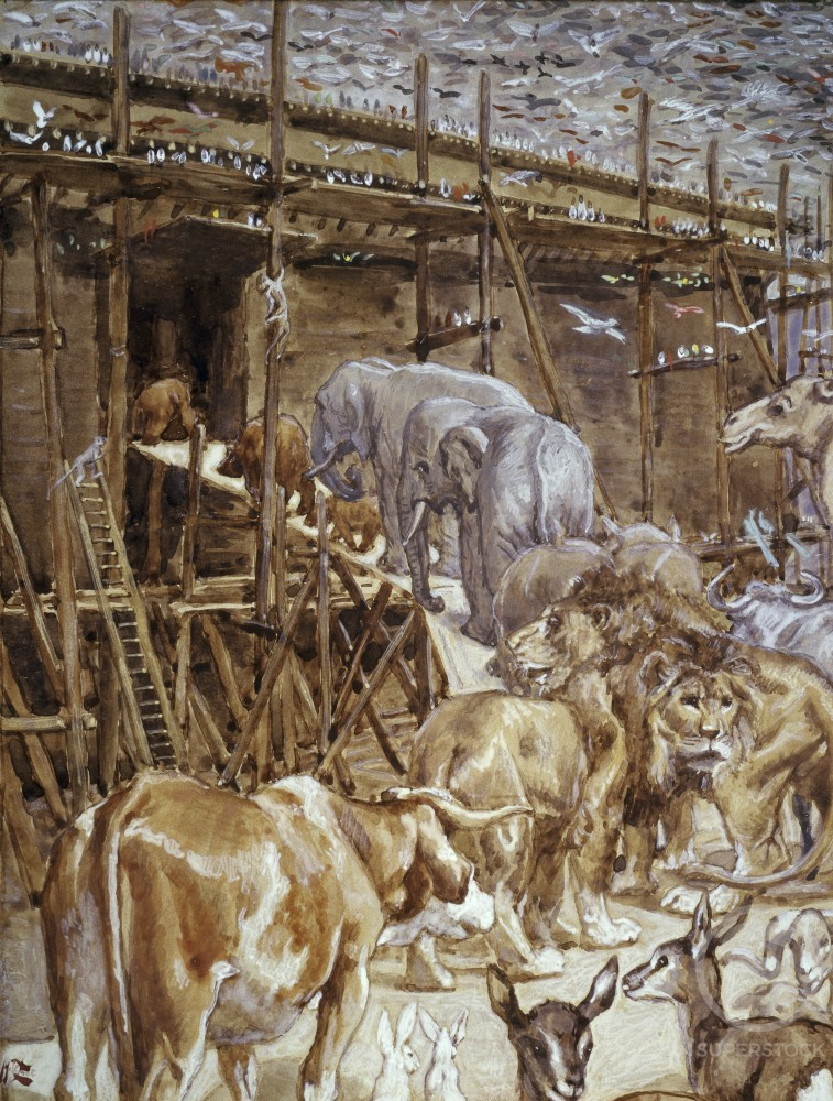 Animals Enter the Ark