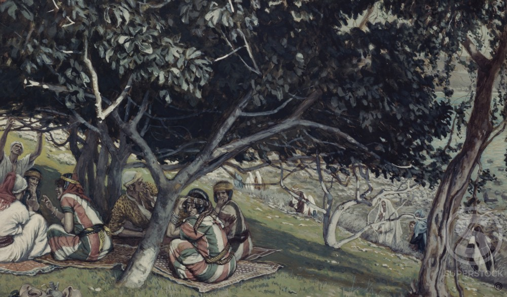Stock Photo: 999-59 Nathaniel under the Fig Tree  (Bartholomew) 