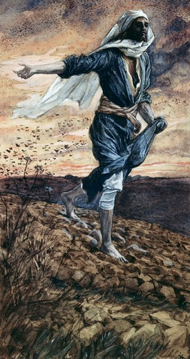 Stock Photo: 999-9119 The Parable of the Sower James Tissot (1836-1902 French)