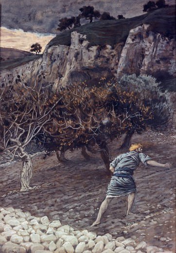 Stock Photo: 999-9996 The Enemy Sowing Tares